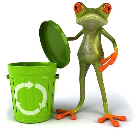 bigstock-Frog-14436878
